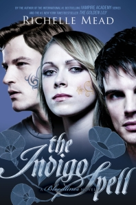 The Indigo Spell Cover