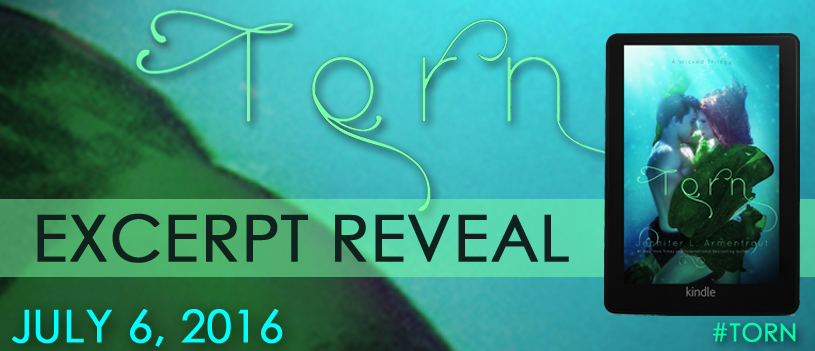 Torn Excerpt Reveal Banner_edited-1